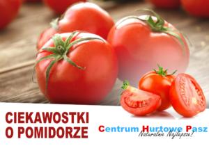 Ogrodnik – Ciekawostki o pomidorze