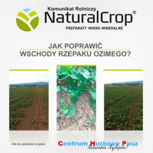 Komunikat rolniczy NaturalCrop nr 17.2017 z dnia 04.08.2017