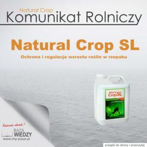 Ochrona i regulacja wzrostu roślin w rzepaku – Natural Crop SL