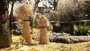 Cykl ogrodnika – Chroń rośliny przed mrozem !