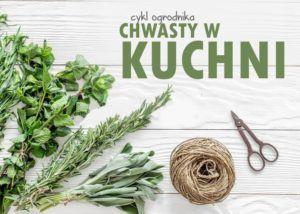 Cykl Ogrodnika – chwasty w kuchni