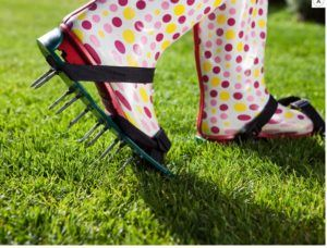 Regeneracja trawnika – pielęgnujemy trawnik po zimie