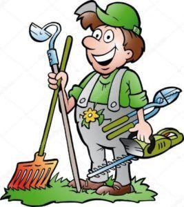 Lipiec w ogrodzie: 5 najważniejszych prac ogrodnika