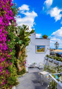 Kwiaty na balkony i tarasy – co wybrać?
