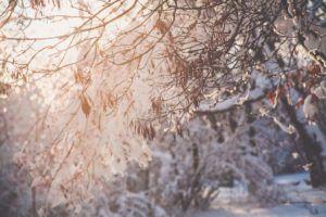 Zimna Zośka nadciąga!