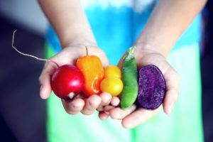 Lipcowe zbiory owoców i warzyw