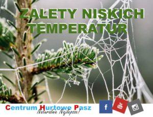 Zalety niskiej temperatury