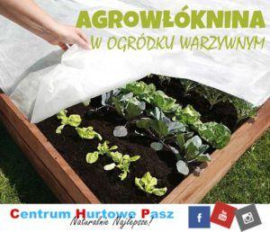 Agrowłóknina – chroniąca rośliny