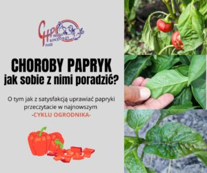 Choroby papryk